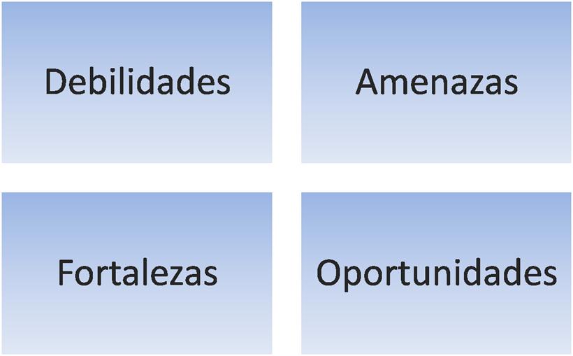 Ana Trenza - Blog - Plan Estrategico - DAFO