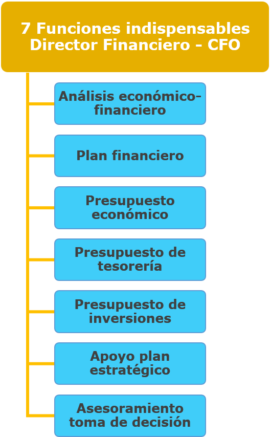 Ana Trenza - 7 Funciones Indispensables Director CFO