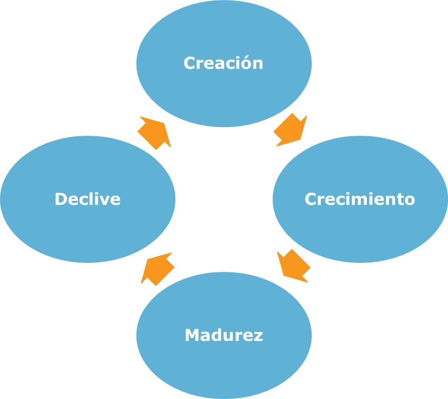 Ana Trenza - Plan Financiero de una empresa - Fases
