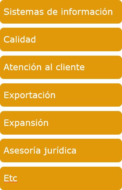 Ana Trenza - Organigrama - Departamentos 2