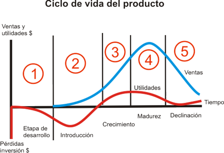 Ana Trenza - Ciclo de Vida del Producto