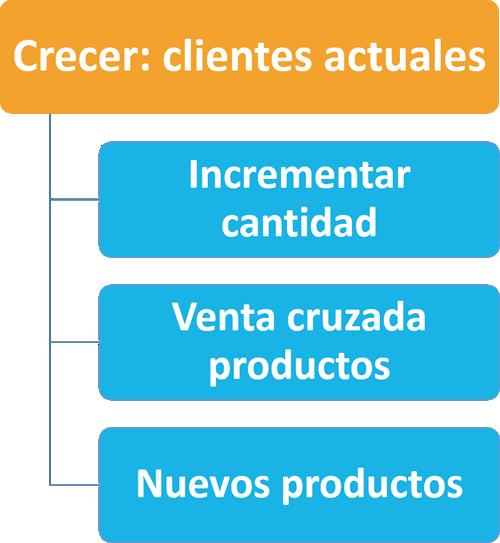 Ana Trenza - Crecer en Clientes I