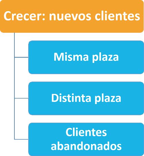 Ana Trenza - Crecer en Clientes II