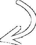 Ana Trenza - Flecha Derecha Blanca