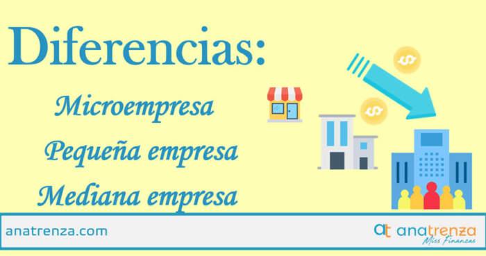 Ana Trenza - Diferencia Microempresa Pequena Empresa Mediana Empresa